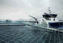 Amar Shipping avanza en implementación de embarcaciones de procesamiento para salmón