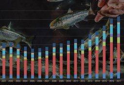 Noruega: Aumentan costos de producción y proyectan mayores precios de venta