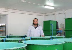 Cepario Caligus en Chile: innovación para el cultivo y estudio del parásito