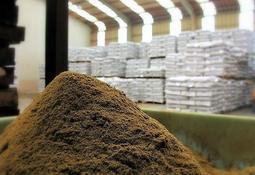 Revelan cuánta harina y aceite de pescado utiliza el salmón chileno