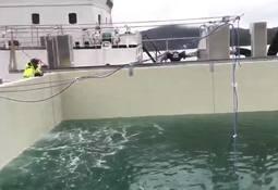 No er det fisk i Engesund-merda  – sjå video
