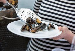 Nye artar kan auke norsk sjømatproduksjon kraftig