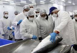 Estudiantes de acuicultura visitaron centro de cultivo como parte de su formación académica