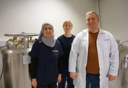 Kryopreservering tar vare på de beste genene