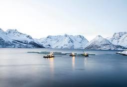 Grieg Seafood Finnmark fikk bot av Fiskeridirektoratet