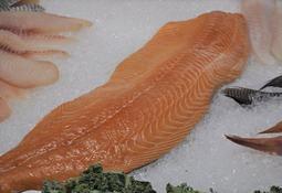 Supermercado francés comenzará a vender truchas alimentadas con harina de insectos