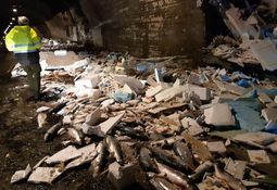 Flere tonn laks havnet i veibanen