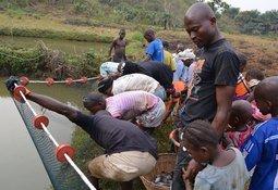 Skretting sets sights on boosting African aquaculture