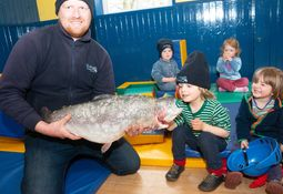 Dawnfresh bids to double Scottish trout production