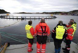Siste fase med testing i Atlantis-prosjektet før utsett av fisk