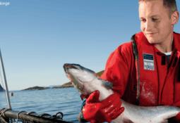 Nord-Norges første fagskole innen havbruk er en realitet
