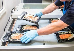 Danish salmon processor folds after fake safety checks are exposed
