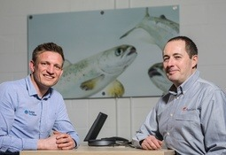 AquaGen buys Dumfries hatchery from Scottish Sea Farms for broodstock site