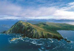 Municipio de Cabo de Hornos acordó oponerse a actividad salmonicultora