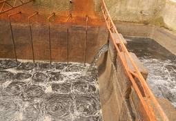La apuesta comercial para reconvertir los lodos de pisciculturas