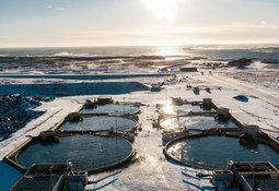 Aquaculture investor is seafood awards finalist