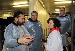 Profesionales noruegos visitan piscicultura en Magallanes