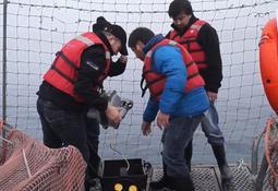 ROV-maker opens branch in Chile's salmon heartland