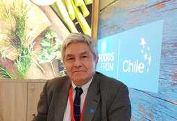 Balance positivo para el salmón chileno en feria de Bruselas 2019