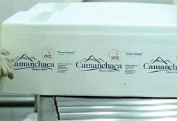 Salmones Camanchaca toma medidas para mantener su solvencia en la crisis