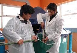 ¿Están interesados los jóvenes en estudiar acuicultura en Chile?