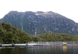 En Magallanes: Centro de AquaChile obtiene certificación BAP