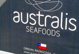 Grupo Joyvio concreta cambios en estructura directiva de Australis Seafoods