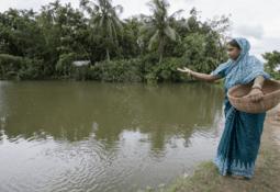 WorldFish making a bigger splash in developing world