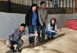 Cargill y Technoserve se unen para apoyar a agricultores de Lupino