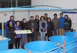 En Chile: Escuelas más sustentables a través de la acuiponía