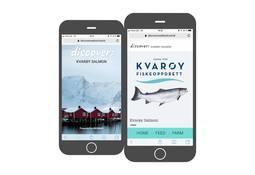 Lanzan herramienta que revela trazabilidad del salmón al consumidor