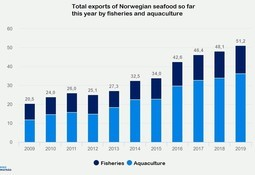 Salmon the key as Norway breaks export value record