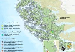 Denuncian relocalización de concesiones de salmón a Reserva Kawésqar