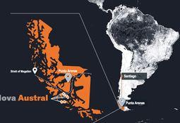 'Transparent' Nova Austral reveals 31% mortality