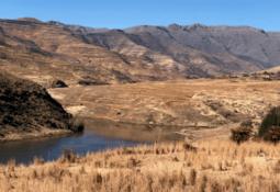 Pure Salmon bygger landbasert anlegg i Sør-Afrika
