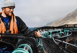 Rigid netting helps Scottish Sea Farms cut seal shootings