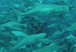Científicos afirman que acuicultura oceánica genera menor huella ecológica