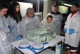 Magallanes: Organizaciones comunales conocen piscicultura Los Cipreses