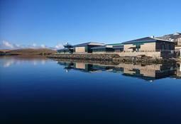Lanzan cursos de acuicultura online para estudiantes de todo el mundo