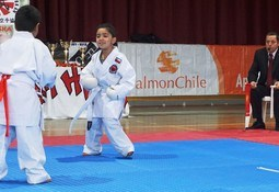 Araucanía: SalmonChile dona tatami para campeonato de karate