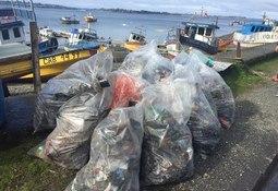 Cermaq realiza limpieza de playa en Calbuco