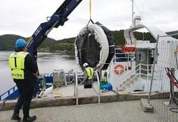 Nuevo sistema busca mantener ambiente libre de piojos de mar
