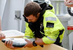 Escocia: Buscan limitar la cantidad de alimento que se le da al salmón
