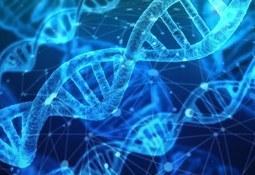 Invitan a curso de mejoramiento genético y selección genómica en salmónidos