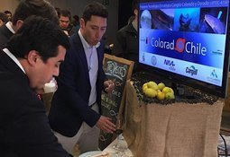 Colorado Chile participa en evento Coquimbo Day 2019