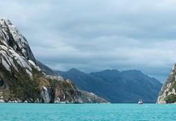 En Magallanes: Realizarán estudios sobre floración de algas nocivas