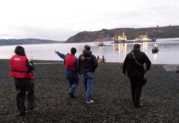 Rapid response to escape recaptures 20% of fish