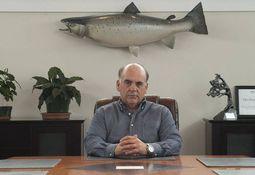 Video muestra a trabajadores de Cooke en EE.UU. maltratando salmones