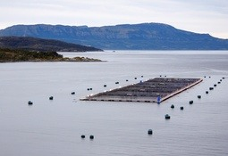 Subpesca simplificará y agilizará trámites de concesiones acuícolas