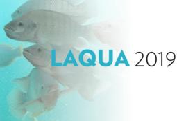 Afinan agenda de actividades de LACQUA 2019